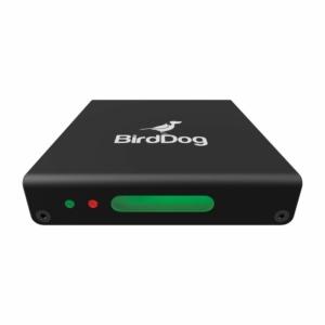 BirdDog Mini HDMI